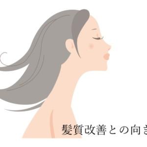 髪質改善との向き合い方